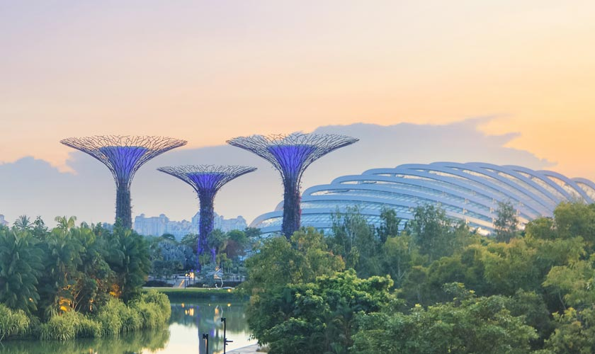 The Garden by the bay - Singapore
